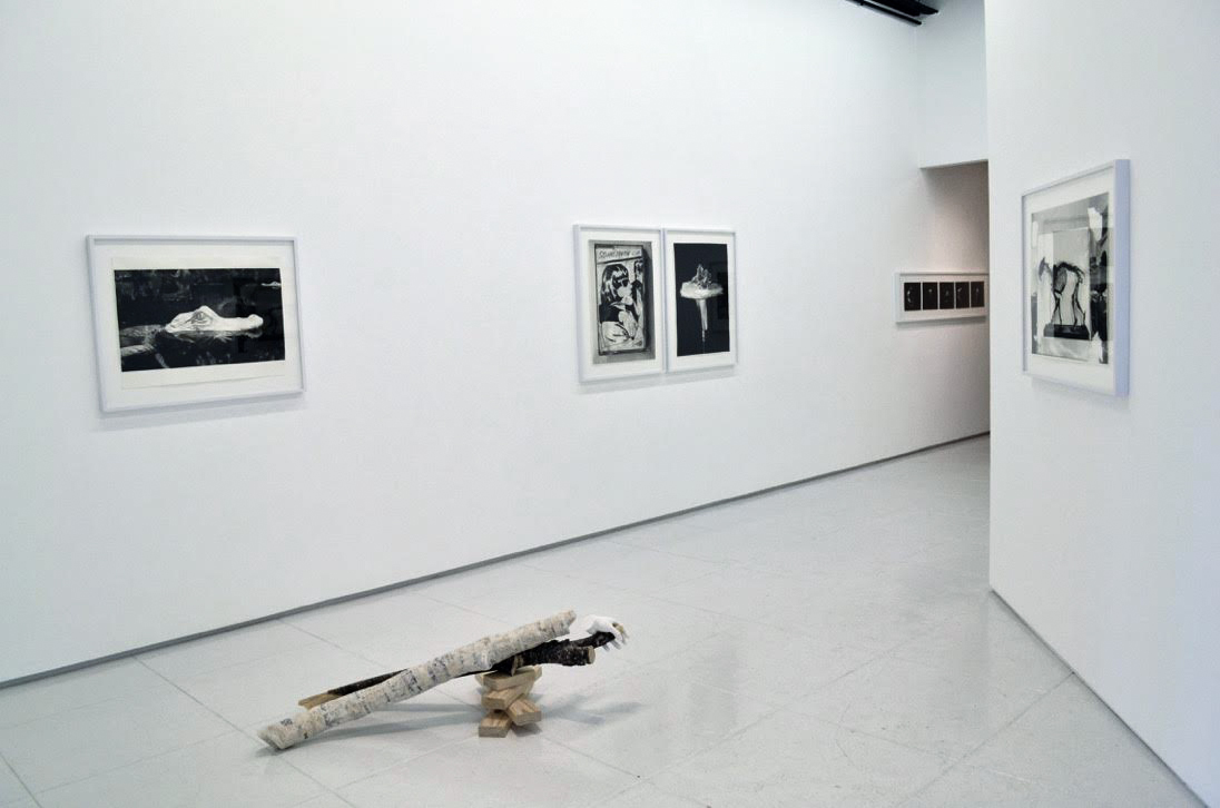 Installation view, elegy for left hand alone (2015)