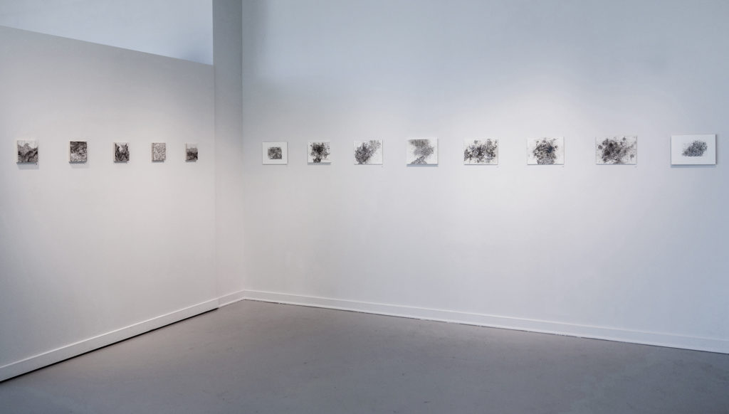 the-unfinding-corwin-levi-install-shot-photo-by-michelle-aldredge-1